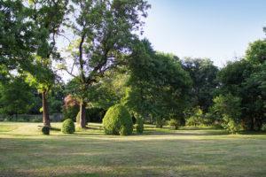 Park w Korczewie