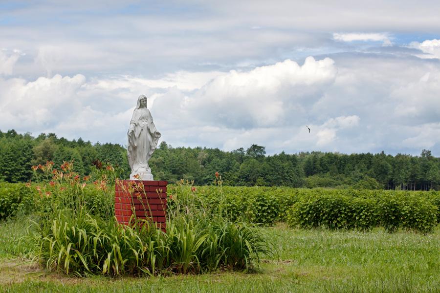 Przydrożna figurka Maryi